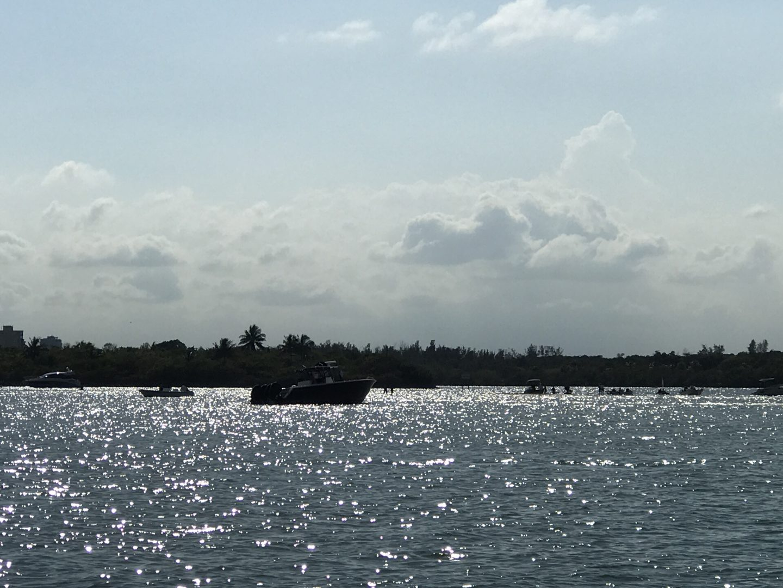 haulover renatl boats